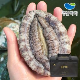 [선물세트][청산바다] 완도 활전복 특대 8-9미 1kg +고급가방