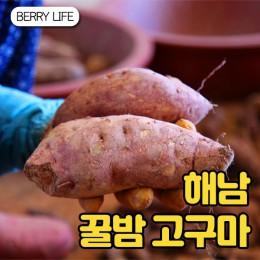 [베리세상] 꿀밤고구마 / 꿀밤 한입고구마