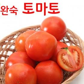 [햇살아름] 제철과일 완숙토마토 5kg(대과,15개 내외)