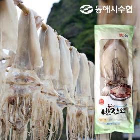[동해시수협] 반건조오징어(소) 10미/800g~1kg