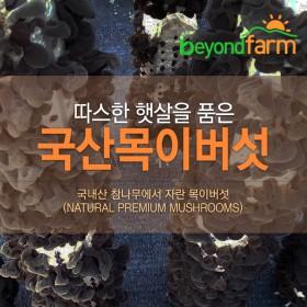 [경기6차산업인증] 최박사의 버섯농장 친환경 생목이버섯 1kg