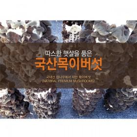 최박사의 버섯농장 친환경 목이버섯분말 500g