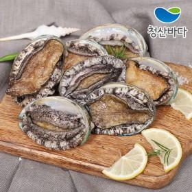 [청산바다] 완도 활전복 중복 14-15미 1kg (손질도구증정)