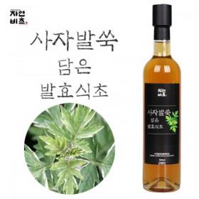 [자연비초] 사자발쑥담은 발효식초/사자발쑥식초