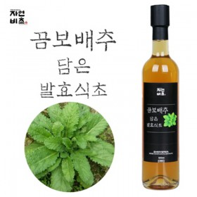 [자연비초] 곰보배추담은 발효식초/곰보배추식초