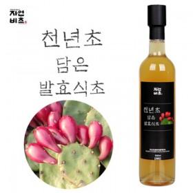 [자연비초] 천년초담은 발효식초/천년초식초